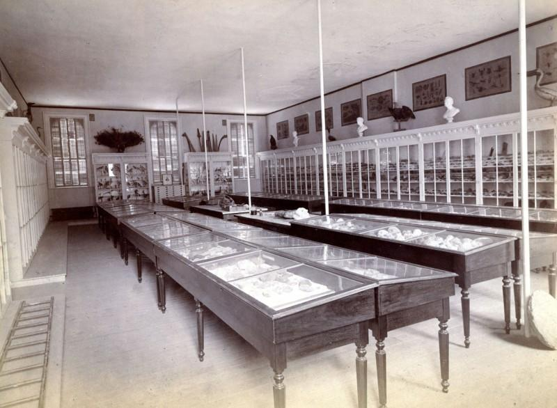 Classroom with geological specimens in the Main building.
