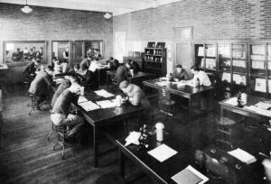 Students working and studying in a Ricketts laboratory